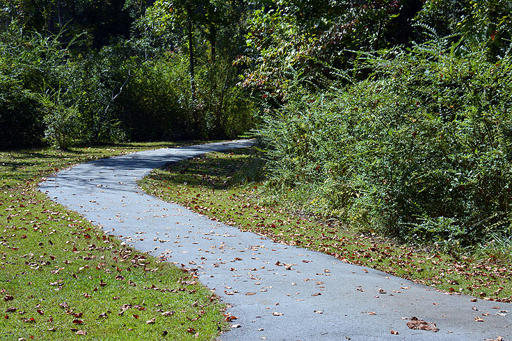 Walking and biking path in the Neuse River Recreation Area