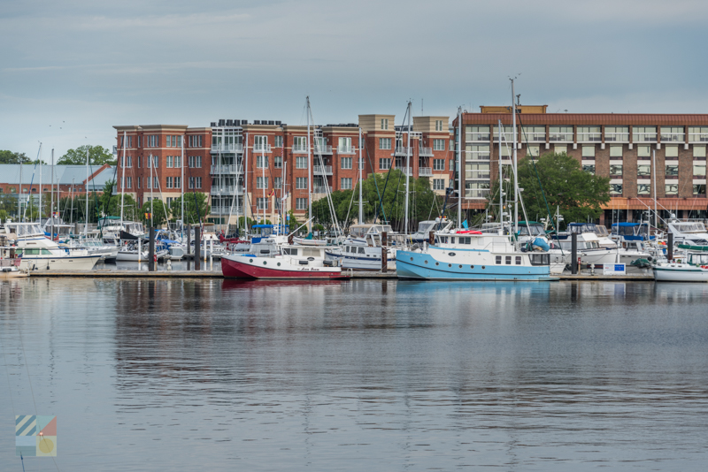 Fishing charters are available in downtown New Bern